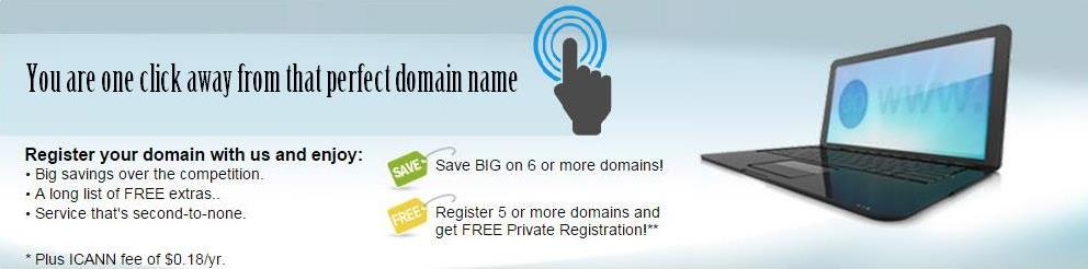 Register your domain with us