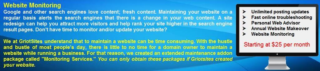 Website Monitoring Services